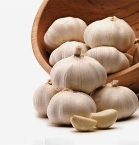 Chinese Normal White  Fresh Garlic